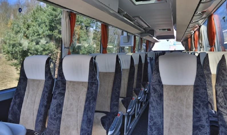 Poland: Coach charter in Lesser Poland in Lesser Poland and Skawina