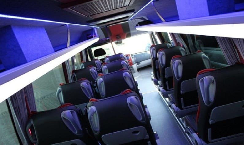 Poland: Coach rent in Lesser Poland in Lesser Poland and Wieliczka