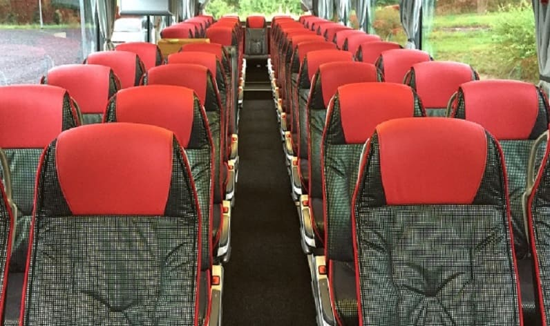 Poland: Coaches rent in Silesian in Silesian and Jastrzębie-Zdrój